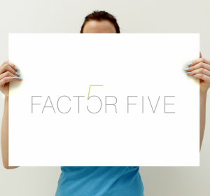 <span>Huisstijl / Logo: Factor 5</span><i>→</i>